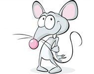 生肖鼠的性格
