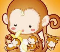 鼠男猴女婚姻状况