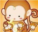 生肖配对:男猴的生肖婚配!