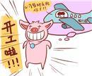 生肖猪本周运势【2018.03.26-04.01】