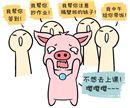 属猪的什么季节出生才会福气满满