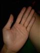 这双手怎么样啊!_问题图片预览_神巴巴问答网