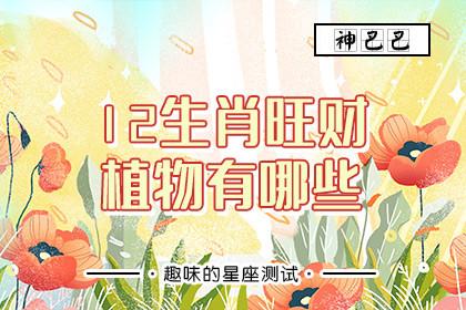12生肖旺财植物有哪些
