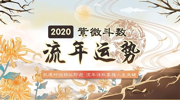 紫微斗数2020流年运势