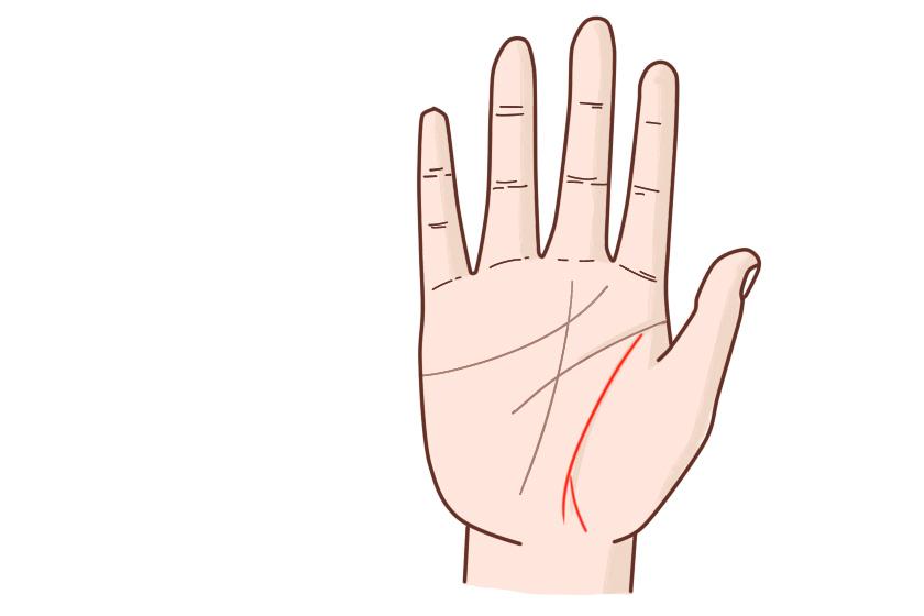 手相属于其它类型