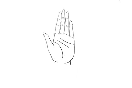 手指呈窄尖状纤长