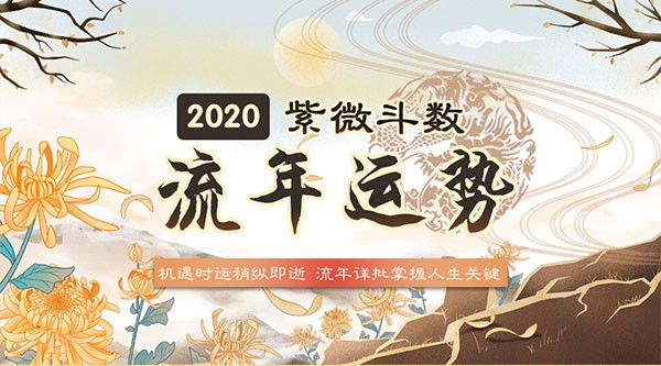 生辰八字2020年运势