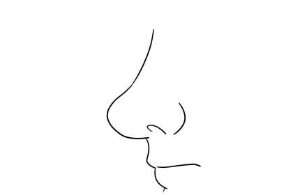 鼻头饱满圆润