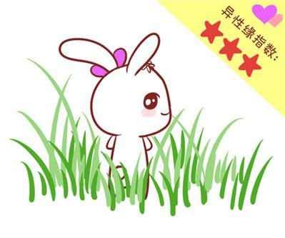 属兔的如何旺桃花运,主动认识新的朋友