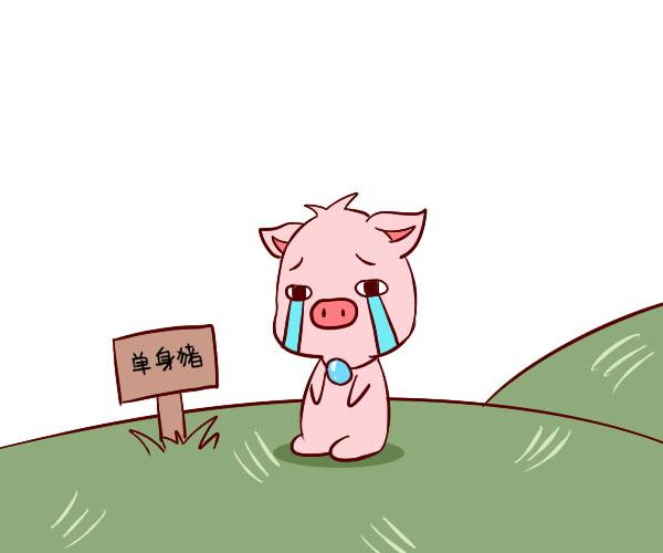 超准的生肖属猪性格特点与命运分析