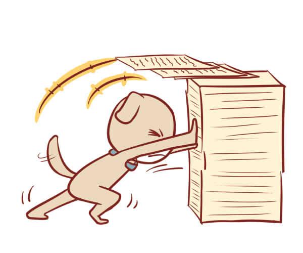 超准的生肖属狗性格特点与命运分析