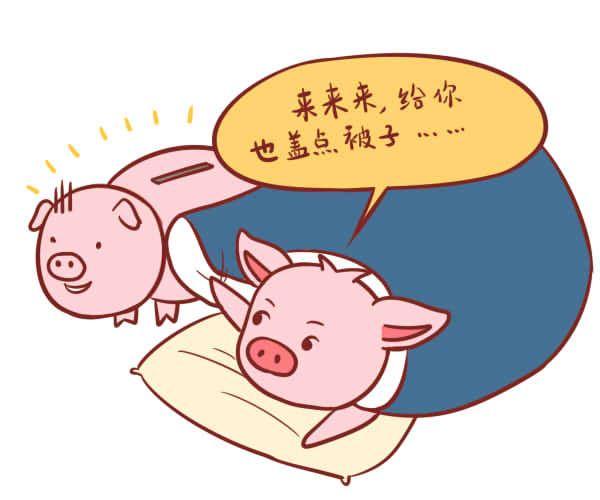 属猪生肖配对什么生肖