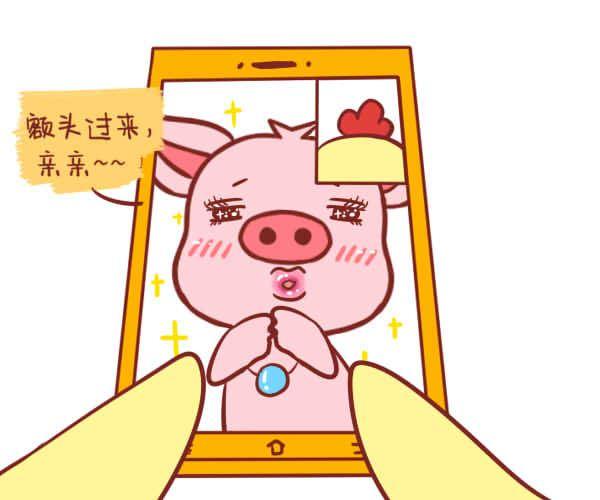 生肖猪本周运势【2017.12.25-12.31】