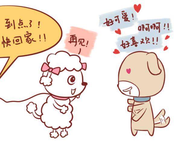 女属羊和男属狗真的最相配吗