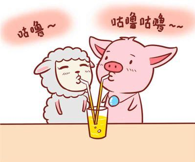 女属羊和男属猪真的最相配吗