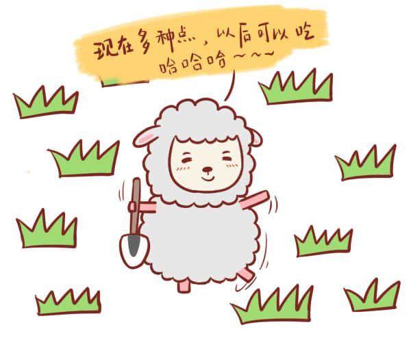 属羊的人性格特点