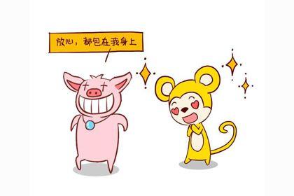 属猪的适合生什么属相的宝宝有利于家庭和睦?