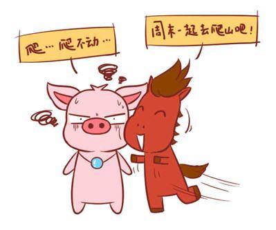女属猪和男属马的相配吗,在一起合适吗