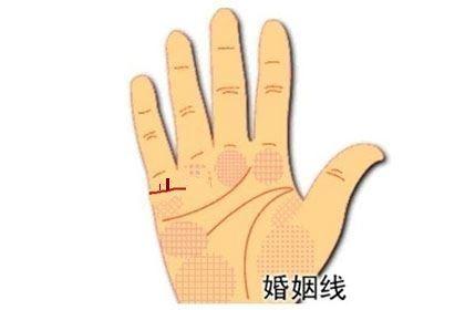 手相婚姻线上有竖纹,一轻一重者为龙凤胎!