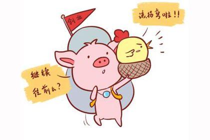 属猪的是什么命,命运好不好?