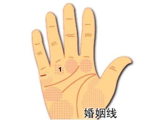 总是单相思的手纹姻缘线图解