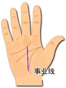 事业运不错!一条手相事业线代表什么?