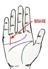 男人财运线看哪里:小指根部的短竖线!