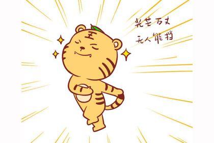 1962年出生属虎的2019年生肖运势查询
