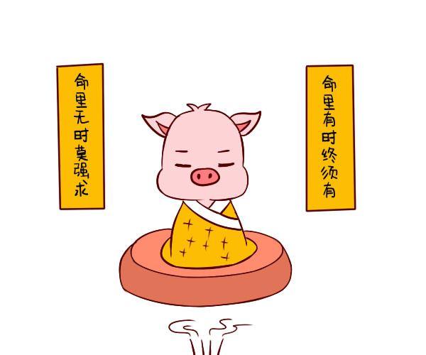 1971年属猪的人2018年多少岁