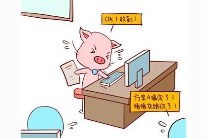 十二生肖猪的来历和传说故事,很有趣!