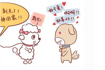 属羊女的爱情观最保守,宁愿错过也不主动!
