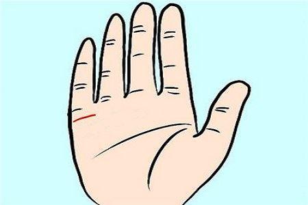 姻缘线看左手还是右手,有男女之别吗?