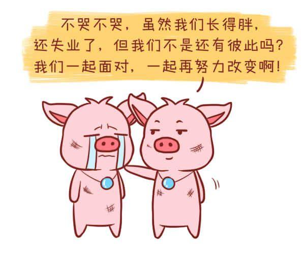 女属猪和男属猪的相配,真的会幸福吗