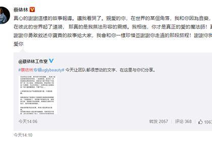 蔡依林回应听障粉丝告白,名人蔡依林在线八字排盘