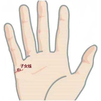 手相子女线图解生双胞胎的手相长这样
