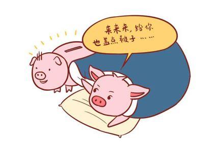 1959年出生属猪的人是什么命,贵人命吗?