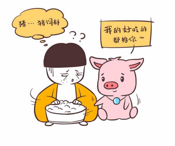 属猪的爱情观,宁可牺牲自己也不伤害对方