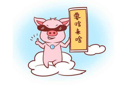 属猪的哪天出生好