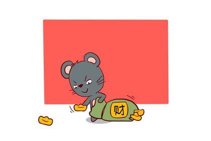 属鼠的女人旺夫吗,命好不好?