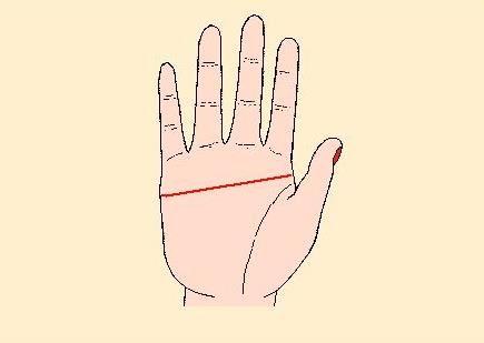 手掌没有智慧线的男人会打骂老婆是真的吗?