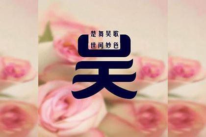 吴氏家族的发展历史
