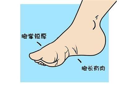 脚相算命图解大全,看什么样的脚型最有福气!