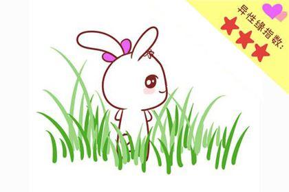 关于生肖兔的美丽传说和来历,属兔的为什么排在第四?