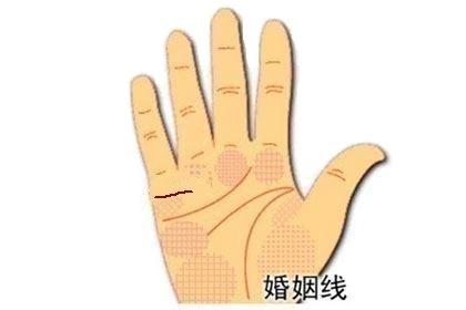手相姻缘线深长代表什么意思?