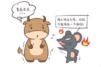 属鼠男和属虎女相配吗,感情的稳固依靠的是这一点
