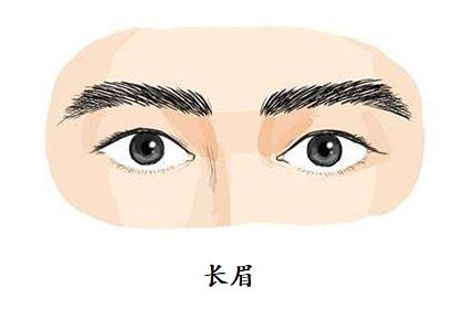 眉毛长的男人好不好?性情温和,属于典型的好好先生