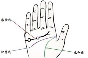 手相感情线出现岛纹是什么意思?