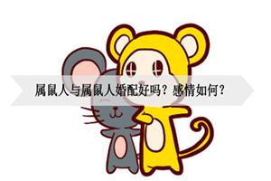 属鼠人与属鼠人婚配好吗?感情如何?