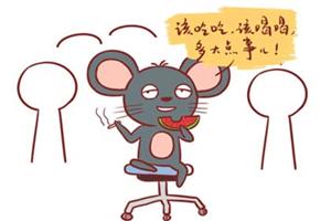 生肖屬鼠的性格和脾氣乖巧,很容易相處?