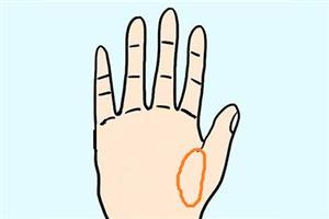 手相金星丘在哪个部位,代表着我们的健康和情感!